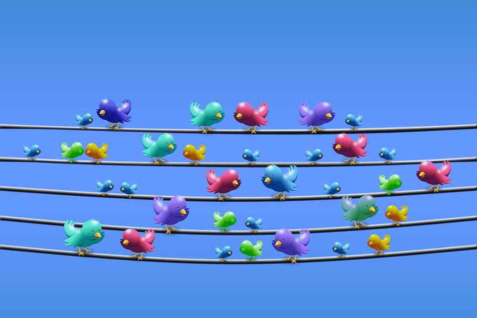 Novas Regras Do Twitter Para Quem Faz Publicação Em Massa 2018